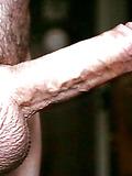 Horny gay cock