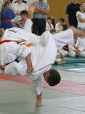 JudoBoy executing throw
