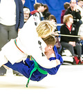 Judo sweep