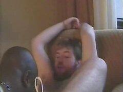 black licks hairy white chub ass and sucks cock