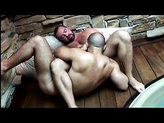 Gay bears hot threesome