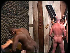 Big black dicks abuse white asses