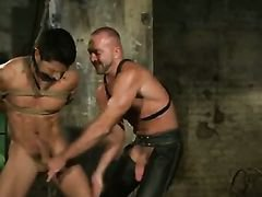 Glorious gay BDSM with hunks