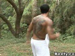 Gay Beefy Muscle Hunk Fucking Analsex Hardcore