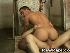 Wild Latino Sex