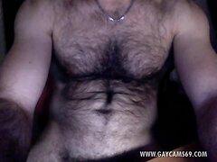Italian Muscled Hairy Bear HugeCock