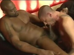Huge black master and tiny white slave