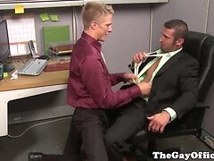Gay office hunks sucking on hard cock