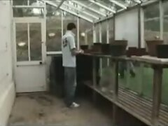 Lad Fucked in Greenhouse
