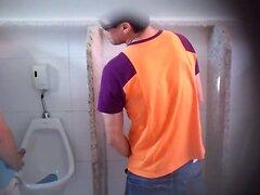 banheiro brasil