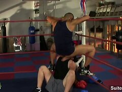 Boxing gay jocks having sex in the gym