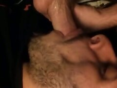 Mexican Swallow Verbal White Bear Cum