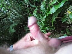 Outdoor action in the bushes