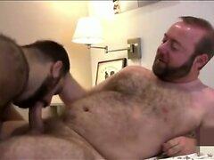 2 bears fucking  scene 2