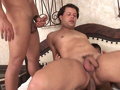 Horny studs loves to fuck and suck each other's dicks in sexy threesome