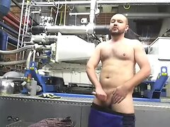 Young Chub at work