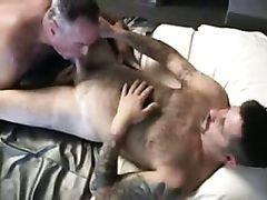 Daddy fucks bear in sex swing