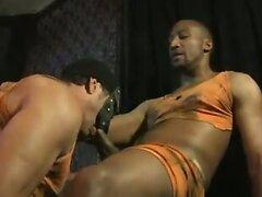 horny orange