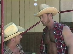 Cowboys - furry men do