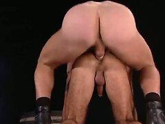 Bear takes stiff dick in ass